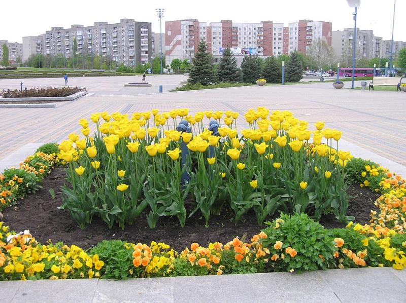 фотографии Южного, Одесская область, квартира в Южном